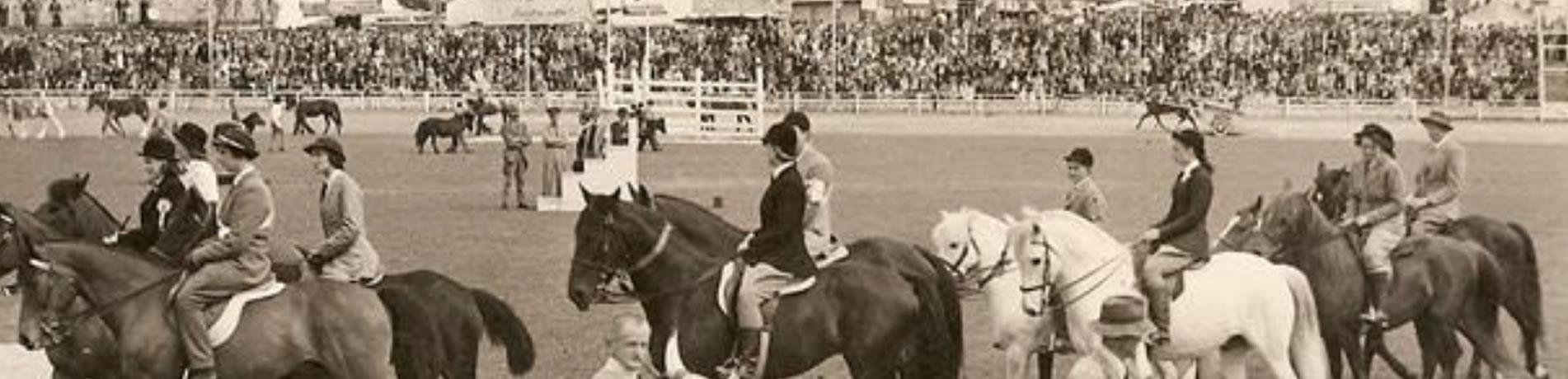 Bendigo Show History
